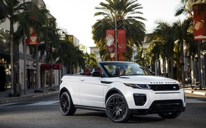 Picture the city, palm trees, street, Land Rover, Range Rover, convertible, Evoque, Ewok, land Rover, range …