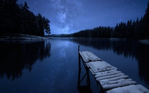 Picture winter, forest, the sky, stars, snow, trees, night, river, shore, pier