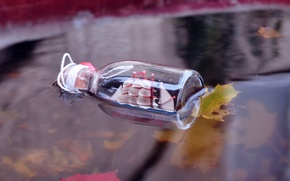 Picture leaves, river, ship, bottle