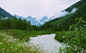 Picture forest, mountains, nature, river, valley, Glacier National Park