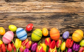 Picture flowers, eggs, spring, Happy, flowers, tulips, tulips, Easter, eggs, Easter, wood, colorful, decoration, spring