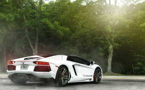 Picture white, supercar, Lamborghini, lamborghini aventador
