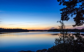 Picture trees, nature, lake, the evening, Nature, trees, lake, evening
