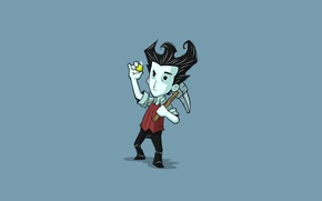Picture minimalism, games, Wilson, Don't Starve