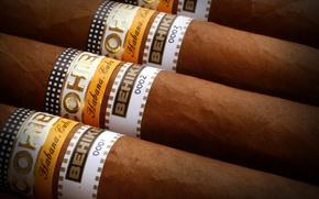 Picture brand, cigar, tobacco, wrapper color chart
