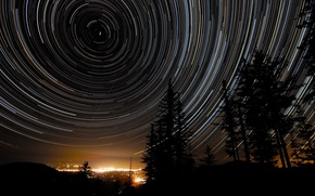 Picture stars, trees, night, the city, Star Trails