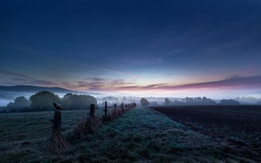 Picture field, fog, bird, the fence, arable land, Nocht