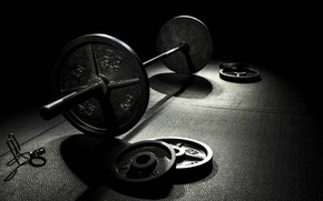 Picture Rod, Gym, Weight