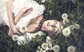 Wallpaper girl, braid, dandelions, Thinloh