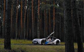 Picture Concept, BMW, Vision, 2009, EfficientDynamics