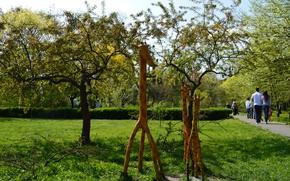 Wallpaper trees, sculpture, giraffe