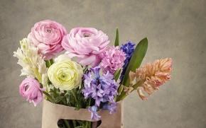 Picture flowers, bouquet, bag, Ranunculus, hyacinths