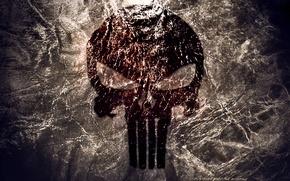 Picture sake, logo, Punisher