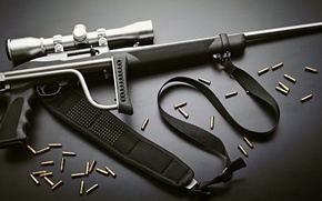 Picture weapons, background, optics, bullets, rifle, butt, folding, semi-automatic, Ruger 10/22