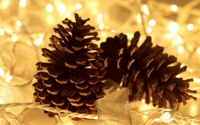 Picture macro, lights, decoration, garland, bumps