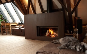 Picture cat, design, house, style, interior, fireplace, attic