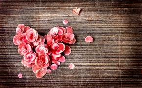 Picture heart, petals, scratches, vintage, vintage