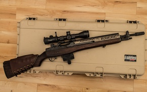 Wallpaper rifle, optics, m14