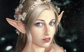 Wallpaper flowers, look, art, background, Fantasy, face, hair, elf, ears, shoulders