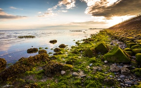 Picture sea, the sky, clouds, sunset, stones, moss