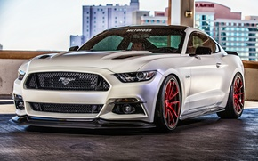 Picture Mustang, Ford, Mustang, Ford, Motoroso