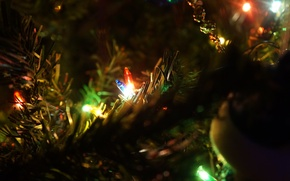 Picture Macro, Light bulb, New year, Tree, Toys, Ogenki