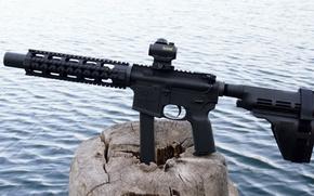 Picture gun, weapon, nature, wood, lake, 9mm, rifle, AR-15, ordnance, AR 15, AR15, 5.56, stump, carabine, …