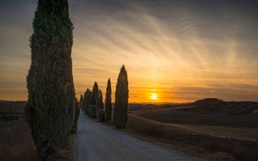 Picture road, sunset, the evening, Italy, cypress, Tuscany