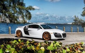 Picture car, Audi, audi r8, rechange, hq Wallpapers