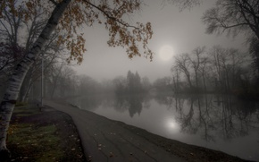 Picture autumn, fog, pond, Park, track