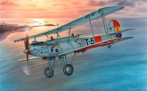 Picture the plane, war, art, artist, bomber, single-engine, biplane, Spain, metal, developed, the firm, service, torpedo, …