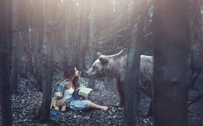 Picture forest, girl, books, bear, bear