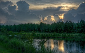Picture forest, clouds, sunset, nature, lake, forest, Nature, sunset, clouds, lake