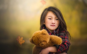 Picture autumn, bear, girl