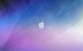 Picture apple, scratches, avrora
