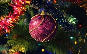 Picture holiday, toy, tree, year, new