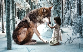 Picture winter, frost, forest, snow, wolf, tale, snowdrops, girl, basket, little