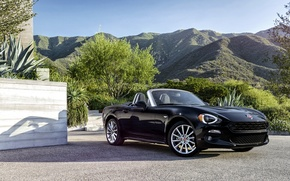 Picture black, Roadster, Black, Fiat, Spider, Fiat, 124