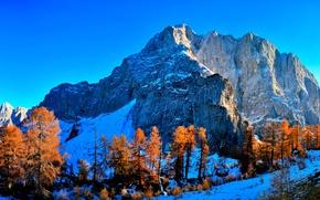 Picture autumn, the sky, snow, trees, mountains, the crimson
