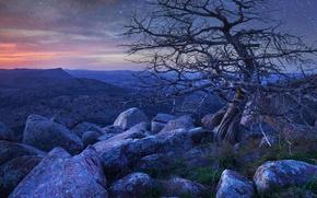 Picture mountains, stones, tree, dawn, USA, Oklahoma, Mount Scott, Wichita Mountains National Wildlife Refuge