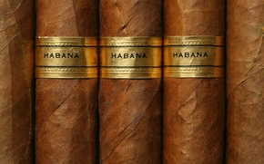 Picture Brown, Gold label, cuban cigars