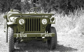 """Picture grass, war, car, the front, army, Jeep, high, patency, world, Second, times, """"Willis-MV"""", Willys MB"""