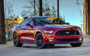 Picture Mustang, Ford, red, 2015