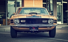 Picture vintage, classic, mach 1, ford, 1970, mustang