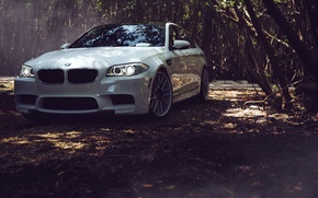 Picture BMW, Leaves, BMW, White, Tuning, F10