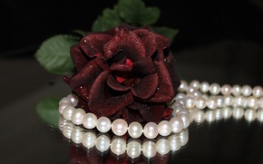 Picture flower, flowers, widescreen, Wallpaper, rose, necklace, pearl, beads, wallpaper, decoration, red rose, different, widescreen, background, …