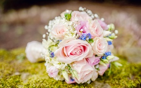 Picture roses, bouquet, forget-me-nots, wedding bouquet