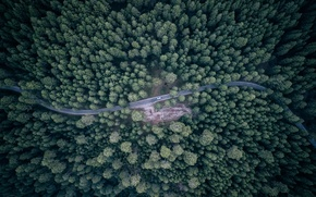 Picture road, machine, forest, the view from the top