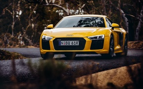 Picture yellow, Audi, Audi, car, the front, V10