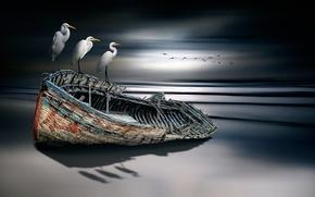 Picture birds, boat, fine art